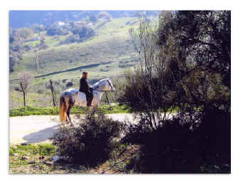 Petra Sherman and the Spanish-Norman stallion 'Soldado H.H.F. enjoy the countryside in southern Spain.