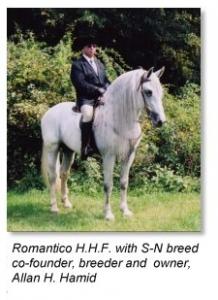 Allan H. Hamid & Romatico H.H.F.