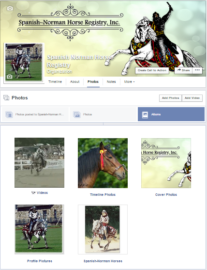 CLICK HERE to visit the Spanish-Norman Horse Registry Photo Albums on Facebook!