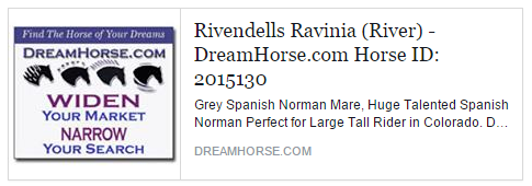 panish-Norman For Sale: Rivendells Ravinia